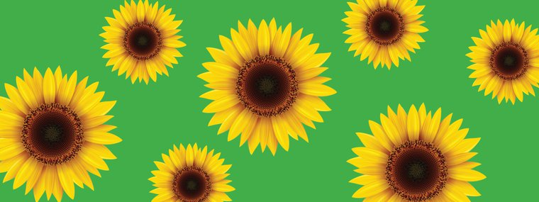 wellington hidden disability sunflower lanyard